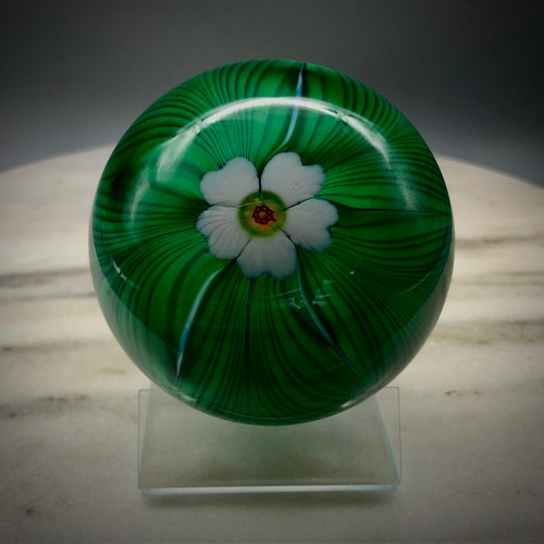 "front view of this Cobalt feather weight, over green, with torchwork blush pink 5 petal flower with center murrine cane, 3"" paperweight, made by glassblowing artist Chris Sherwin in Bellows Falls, Vermont"