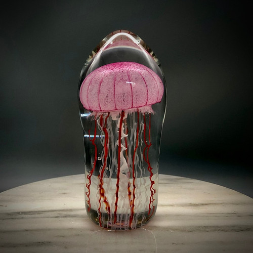 Ruby Pink veined bell Jellyfish sculpture by glass artisan Chris Sherwin, made in Vermont.