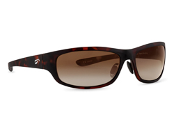 Golden Eagle Sport - Satin Tortoise Frame with Gradient Copper Lenses