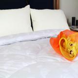Alpaca Duvet Inners