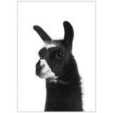 Ear Ear Framed Print by Linens and More