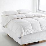 Goose Down & Feather Clip Together Duvet Inner by Fairydown