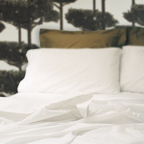 500 Thread Count Egyptian Cotton Sheeting by Seneca