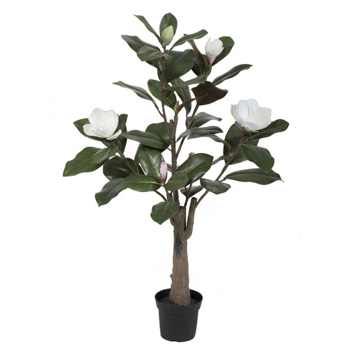 Potted Faux White Magnolia by Linens & More