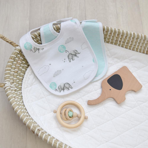 2 Pack Bibs by Living Textiles