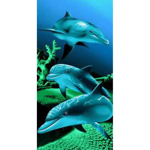 Dolphin Beach Towel by Elements