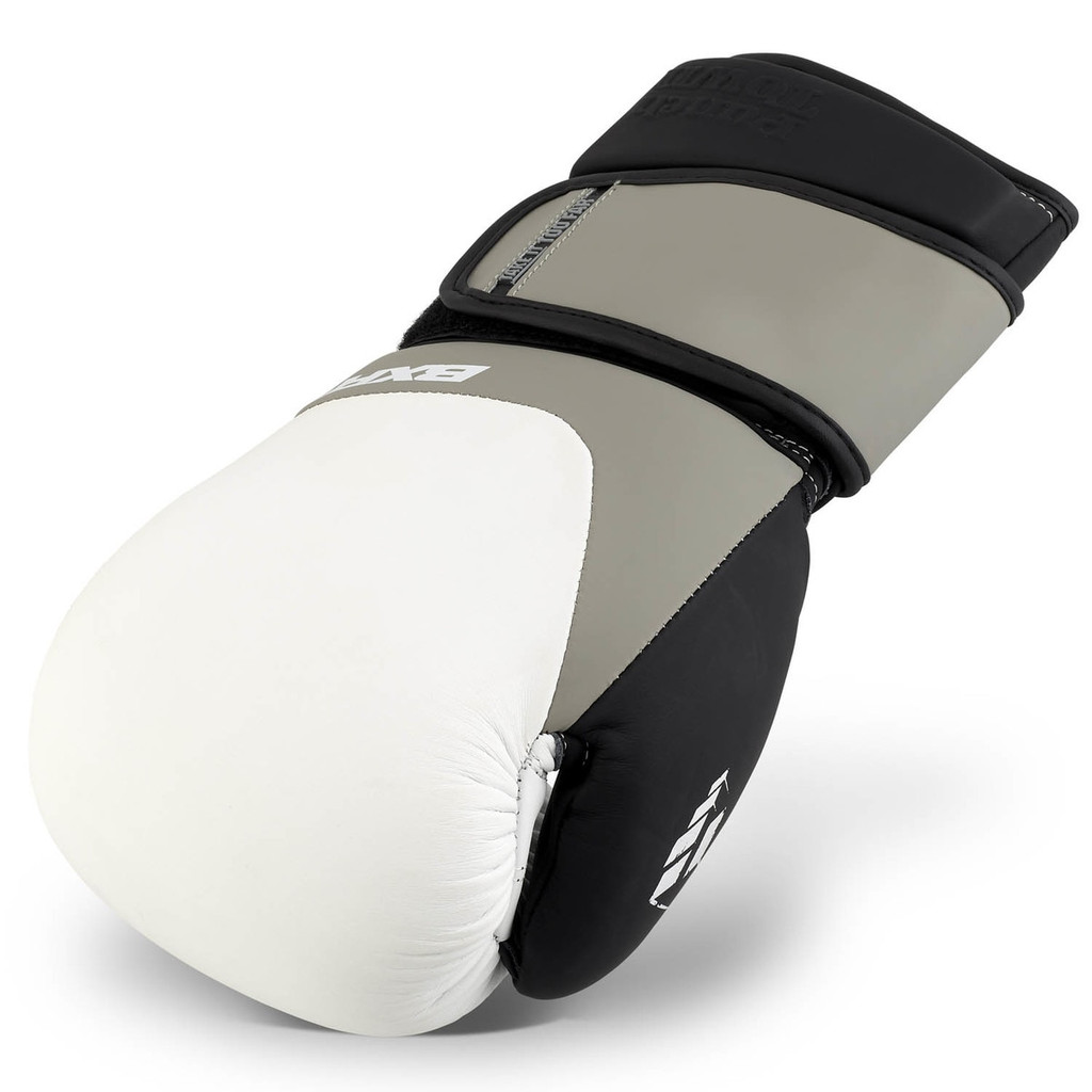 PunchTown BXR eX2 Boxing Glove