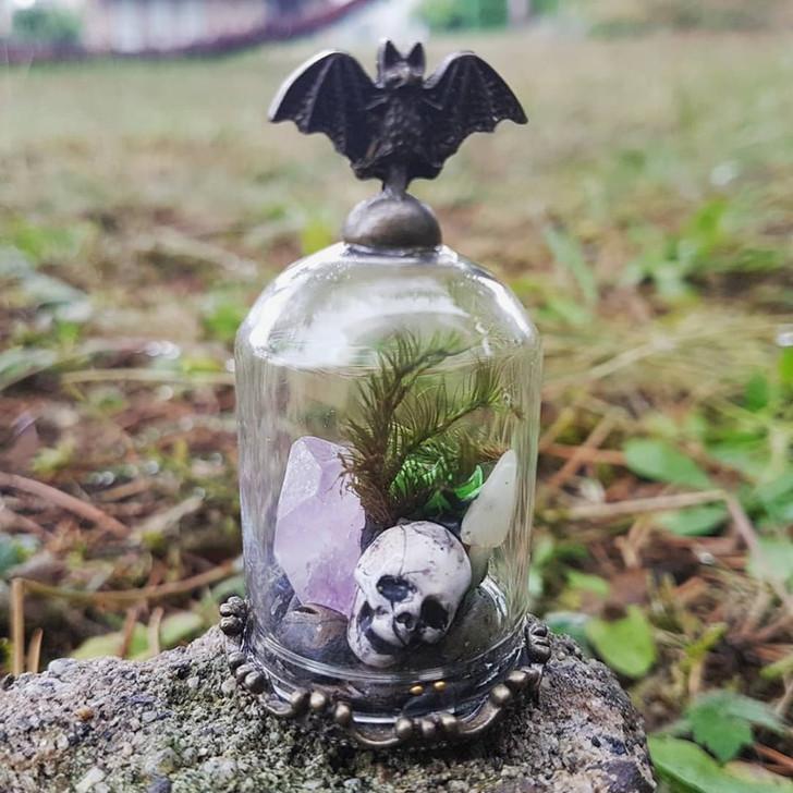 Skull terrarium 1