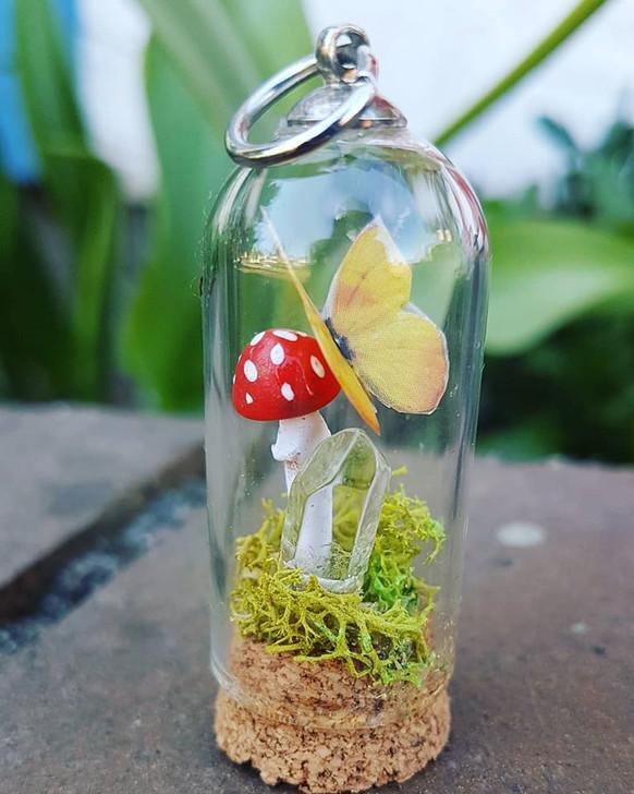 Mushrooms terrarium 26
