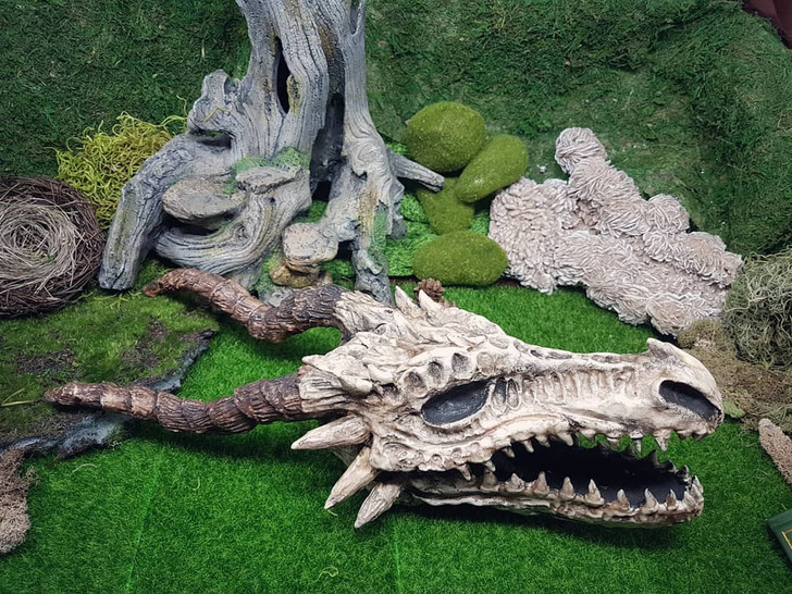 Paper Mache Dragon Skull
