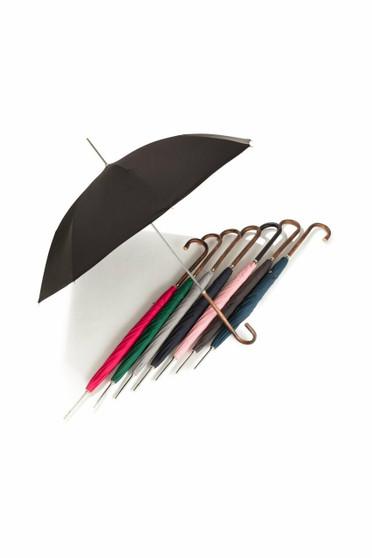 ladies City Slim  James Ince Umbrellas - group shot