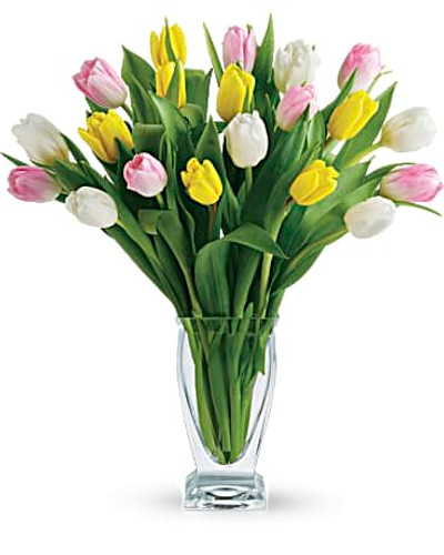 Tulip Medley Bouquet- One Dozen Assorted Tulips