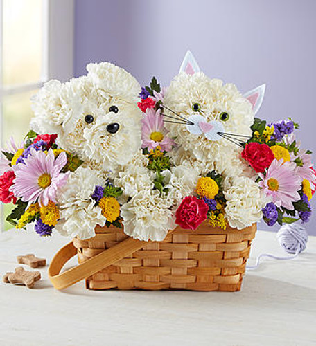 "Paw-Some Pals™ EXCLUSIVE Surprise a pet lover in your life with our truly original arrangement. An adorable cat and dog duo are expertly crafted with white carnations, surrounded by a mix of bright and cheery blooms. Set in a charming, handled basket, it's a sweet gift for birthdays, to say ""thanks"" or just to make someone smile."