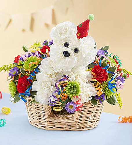 Another Year Rover™ EXCLUSIVE Turning another year older is a lot more fun with our signature birthday a-DOG-able®! This party pooch arrives wearing a festive hat, surrounded by a mix of colorful blooms to liven up their celebration. A great gift idea for any age, he's here to deliver your best wishes in truly original style.