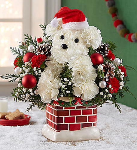 EXCLUSIVE Who's that doggie dashing down the chimney? It's our very own Santa Paws! Hand-crafted from a merry mix of blooms & ornaments and decked out in a festive Santa hat, our favorite holiday pup is perched inside our exclusive, snow-topped chimney container with plenty of old-world charm. Including a nostalgic ornament of Old Saint Nick and his sleigh, this jolly fella is ready to unleash Christmas cheer on family & friends.