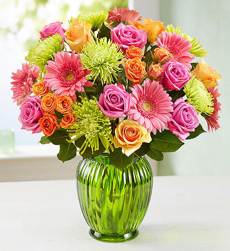 Color their world and captivate their senses with a kaleidoscope of our freshest blooms! We've gathered classic roses, petite spray roses, cheery Gerbera daisies and exotic Fuji mums to help you deliver a smile for birthdays, housewarmings, get well wishes or just because.