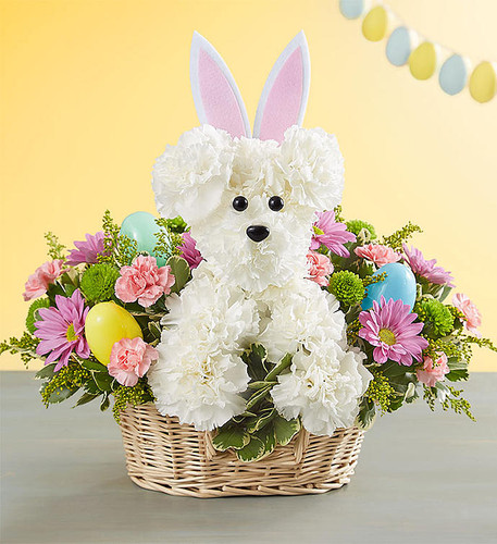 EXCLUSIVE Every dog has his day, but Easter belongs to the bunnies! We've dressed up our truly original a-DOG-able® arrangement for Easter, adding pastel carnations, asters, and poms. With a pair of festive bunny ears and accented with colorful eggs, this playful pet creation is sure to make it a hoppy holiday celebration!