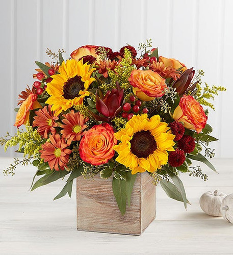 The color and charm of an autumn country harvest inspired our new farmhouse-style bouquet. A loose, natural gathering of blooms in vibrant shades of red, orange and yellow creates the perfect complement to our rustic, grey washed wooden cube. With its soft tones and natural textures, it's an ideal container for flowers and plants, adding warm and coziness to any fall décor.