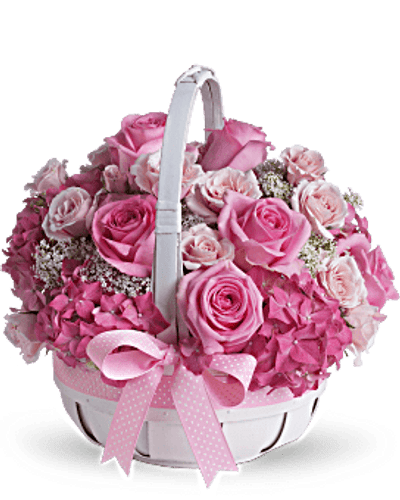 Pink roses and hydrangea are interspersed with delicate Queen Anne's lace in a white handled basket. Trimmed with polka-dotted pink grosgrain ribbon. Orientation: All-Around