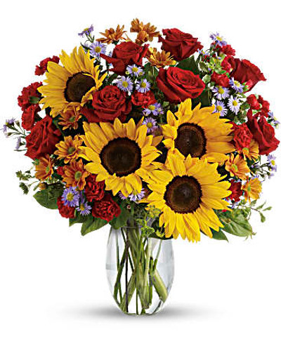 A sunny sunflower bouquet gets an autumnal spin with the addition of pretty bronze daisy mums and rich red roses. The cheerful autumn floral arrangement is rich with color, making it a stylish, energizing pick for any fall occasion.