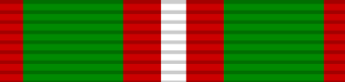 Queen's Bravery Medal