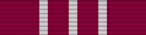 Distinguished Weapons Qualification Medal