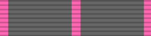 Navy/Marine Rifle Sharpshooter Medal