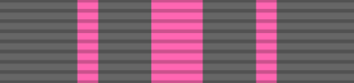 Navy/Marine Pistol High Expert Medal