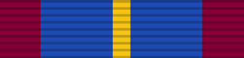 Silesian Anti-Piracy Campaign Medal