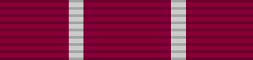Weapons Qualification Medal