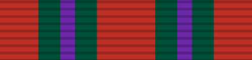 Navy Commendation Decoration