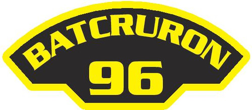 50 patches of BatCruRon 96.  Please be aware if this is the first run, 11 of those patches will be withheld for our legal obligation. After the initial order, all 50 patches will be shipped.