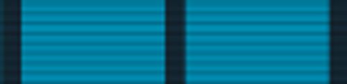 Battle Efficiency Medal