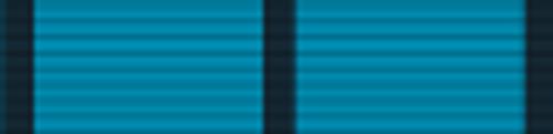 Battle Efficiency Medal