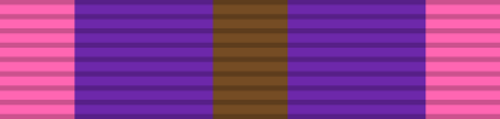 Bronze Cross of Courage