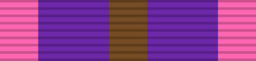 Bronze Cross of Courage