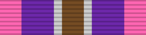 Silver Cross of Courage