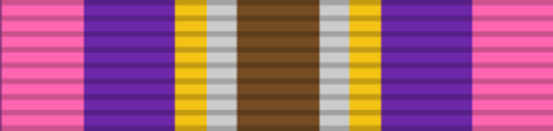 Gold Cross of Courage