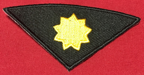Gold Star Rank Insert