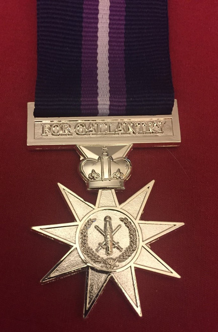 22 - Navy Star Medal