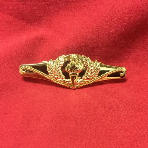 Chartered Staff Member Pin (Gold)
