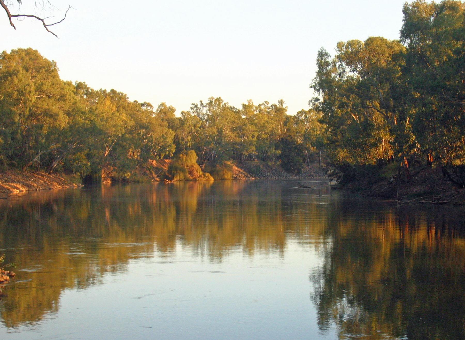 murrumbidgee-river-in-wagga-wagga.jpg