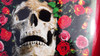 Skull & roses - Tank top Decal