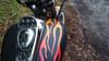 shown on tank & fender. Fire with mocha pinstripe