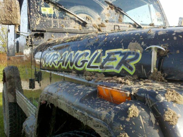 jeepwrangler14.jpg