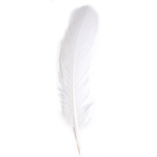 "12"" Turkey Quills -White"