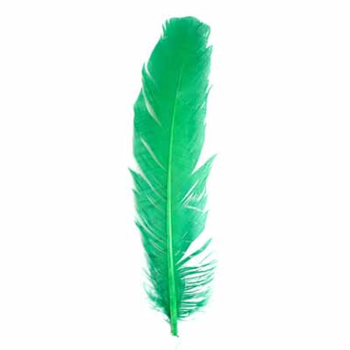 "12"" Turkey Quills -Green"