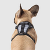 The Everything 3-in-1 Dog Harness