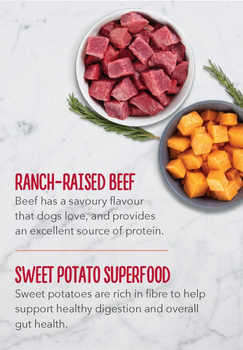 Ranch-Raised Beef Liver & Sweet Potato Limited Ingredient High Protein Biscuits