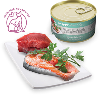 Tuna With Salmon Canned Cat Food